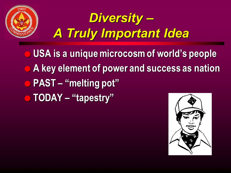 Diversity – A Truly Important Idea