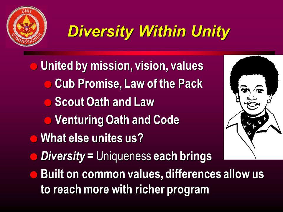 Diversity Within Unity