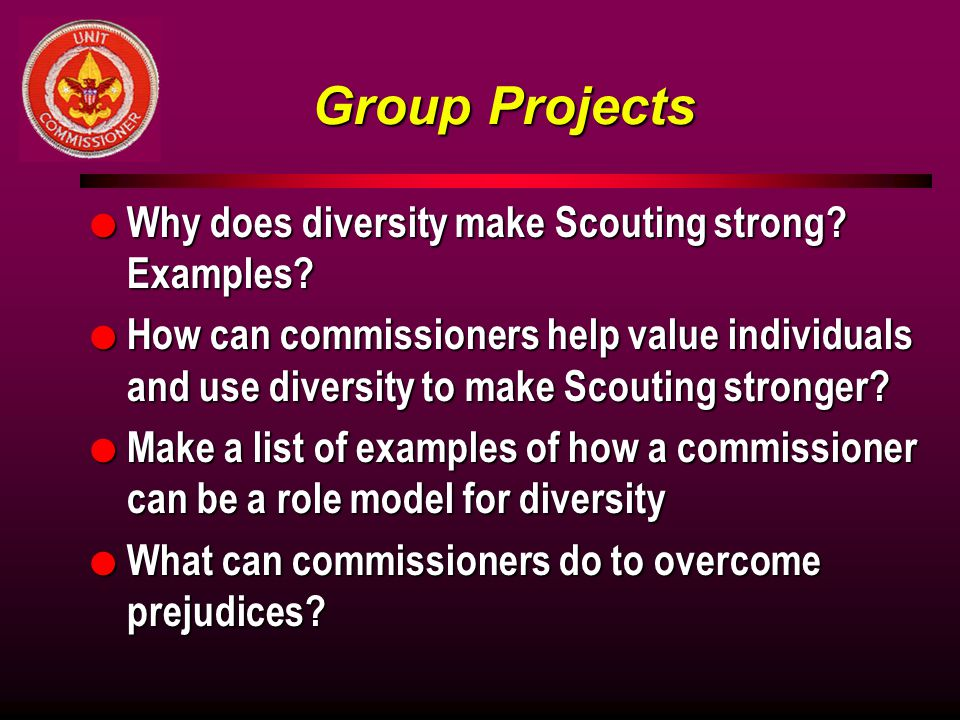 Group Projects Why does diversity make Scouting strong Examples