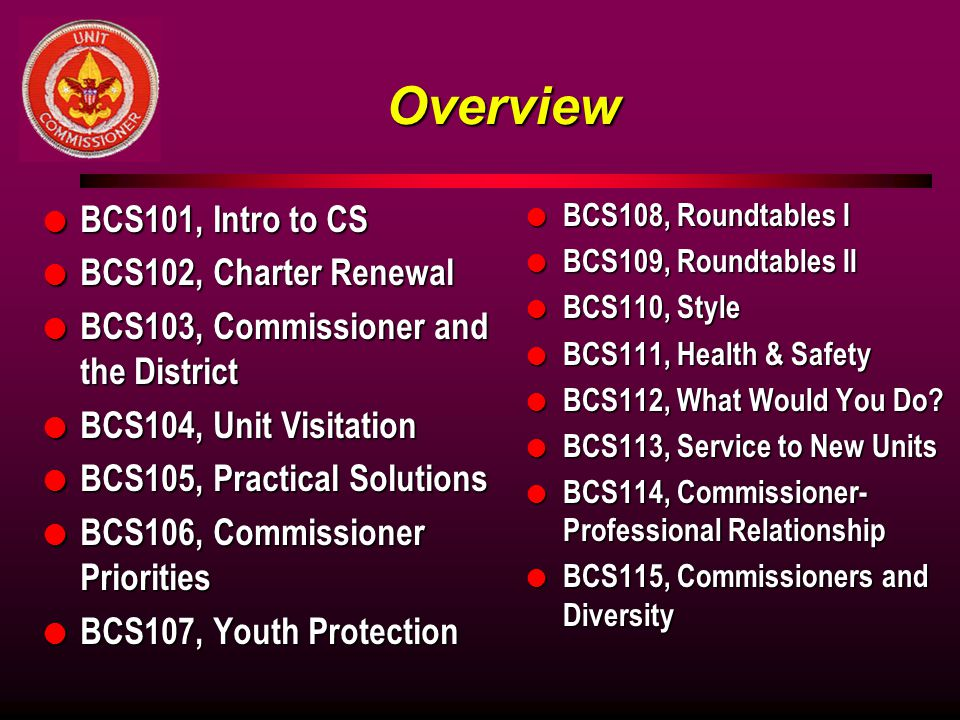 Overview BCS101, Intro to CS BCS102, Charter Renewal