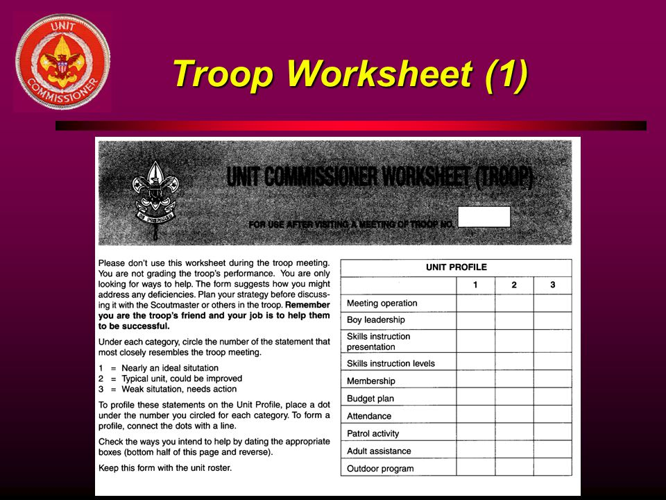 Troop Worksheet (1)
