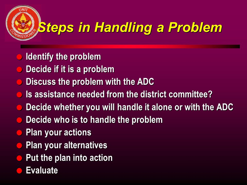 Steps in Handling a Problem