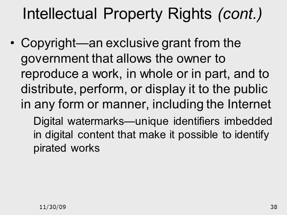 Intellectual Property Rights (cont.)