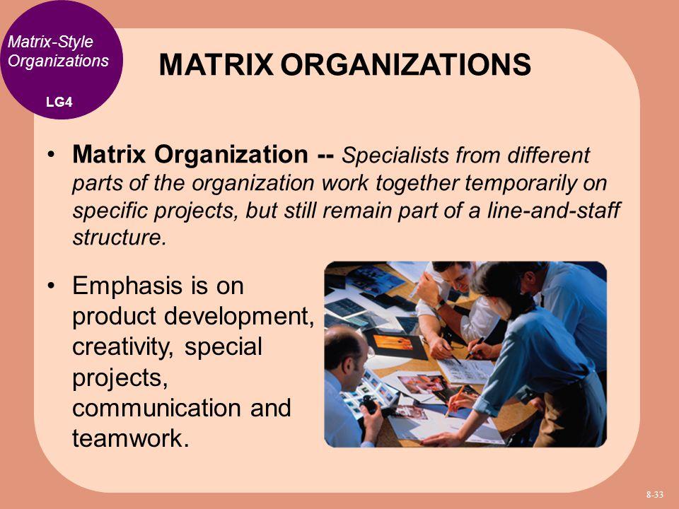 MATRIX ORGANIZATIONS Matrix-Style Organizations. LG4.