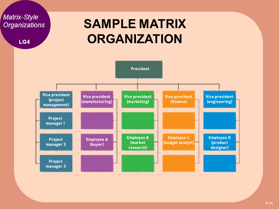 SAMPLE MATRIX ORGANIZATION