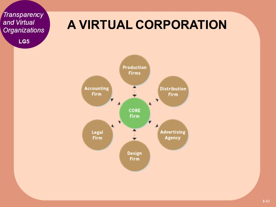 A VIRTUAL CORPORATION Transparency and Virtual Organizations LG5