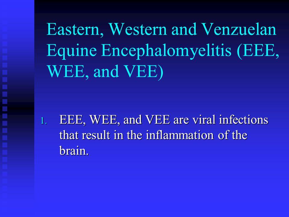 Eastern, Western and Venzuelan Equine Encephalomyelitis (EEE, WEE, and VEE)