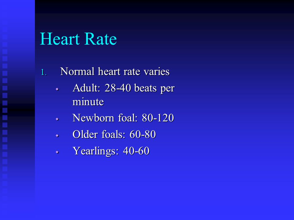 Heart Rate Normal heart rate varies Adult: 28-40 beats per minute
