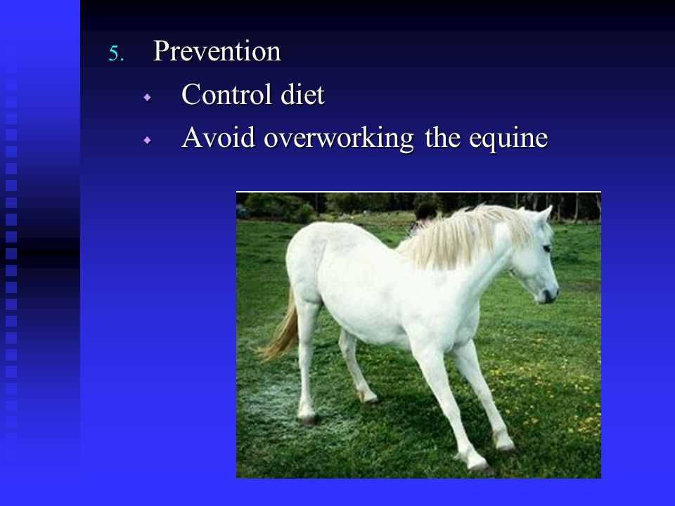 Prevention Control diet Avoid overworking the equine