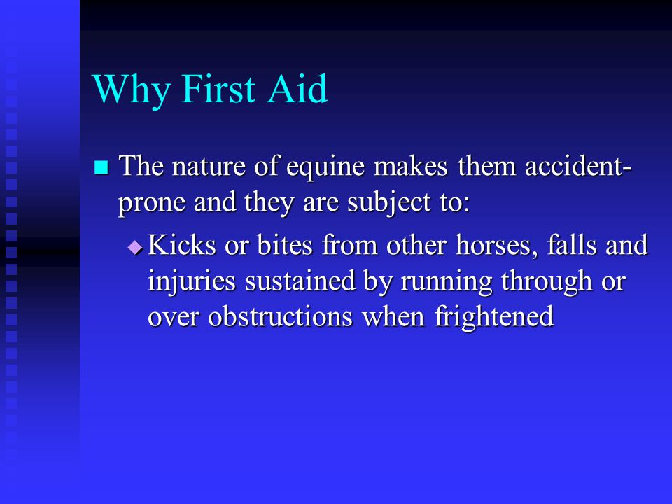 Why First Aid The nature of equine makes them accident-prone and they are subject to: