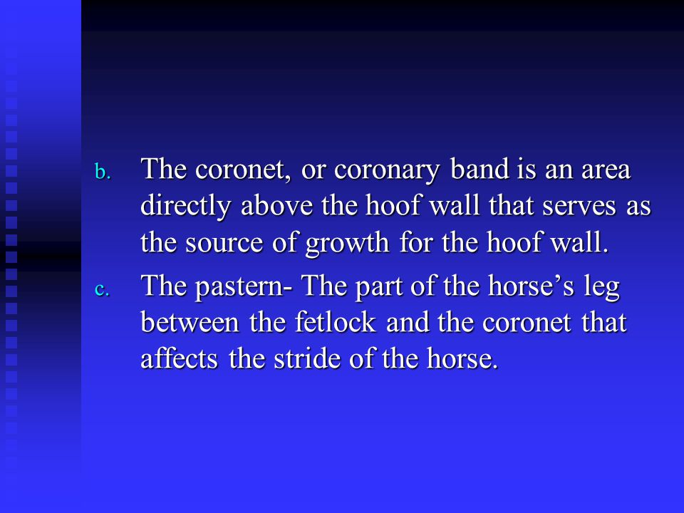 The coronet, or coronary band is an area directly above the hoof wall that serves as the source of growth for the hoof wall.