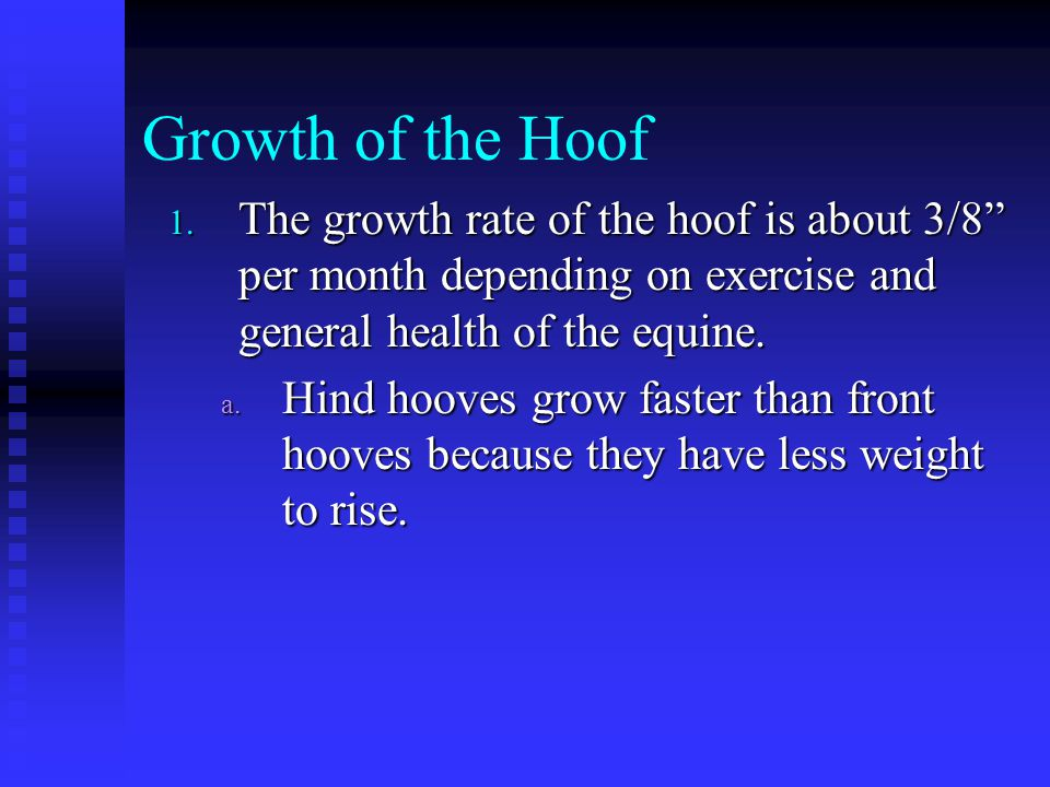 Growth of the Hoof The growth rate of the hoof is about 3/8 per month depending on exercise and general health of the equine.