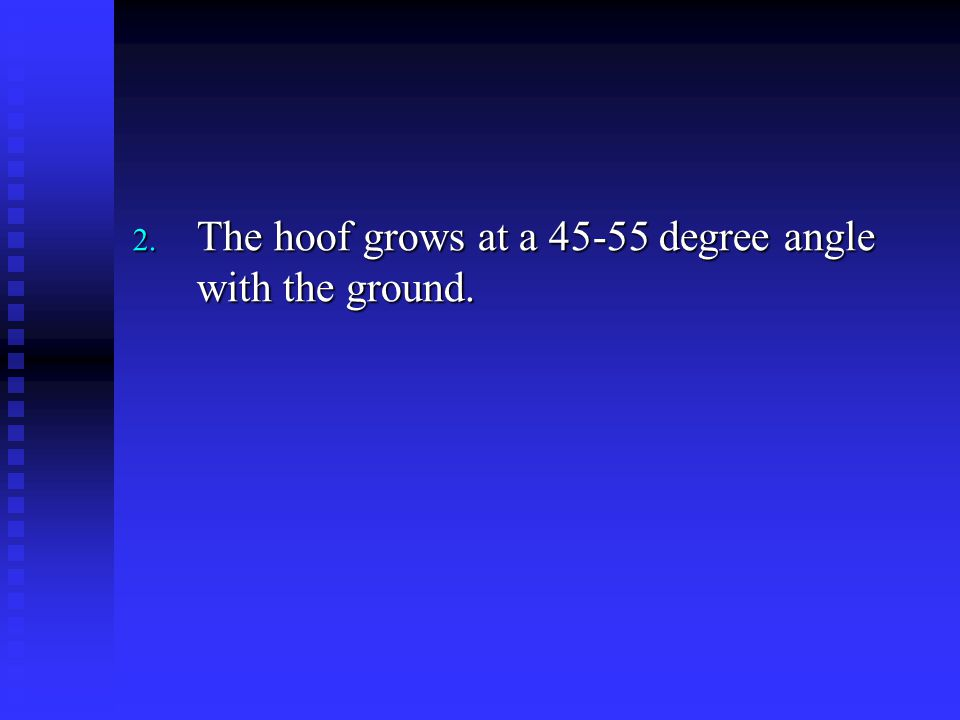 The hoof grows at a 45-55 degree angle with the ground.
