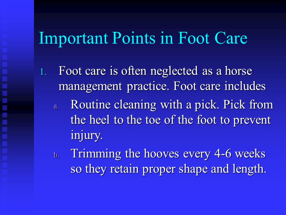 Important Points in Foot Care