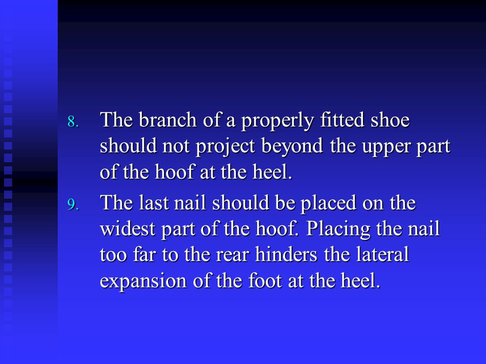 The branch of a properly fitted shoe should not project beyond the upper part of the hoof at the heel.