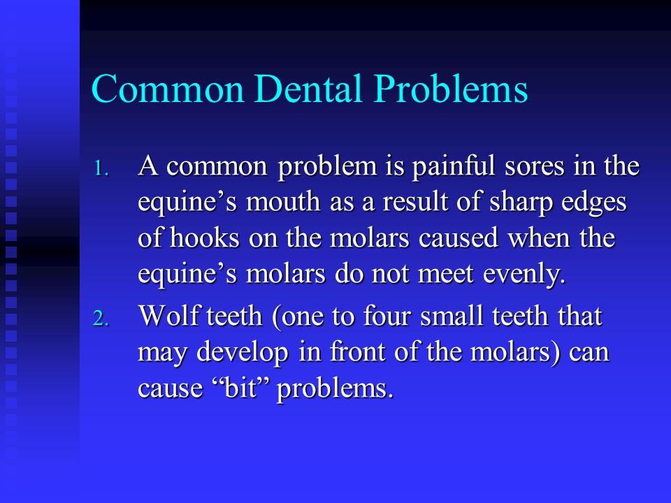 Common Dental Problems