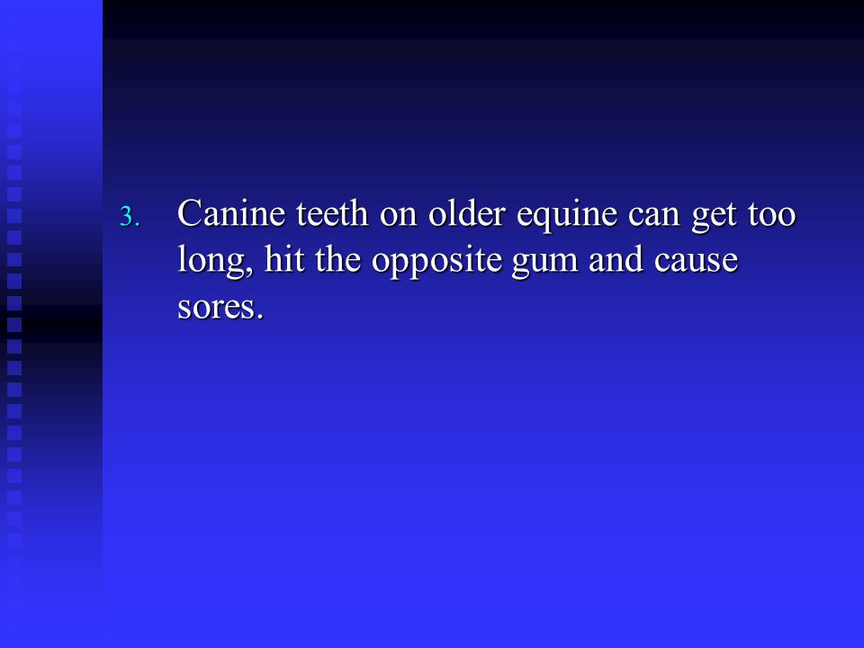 Canine teeth on older equine can get too long, hit the opposite gum and cause sores.