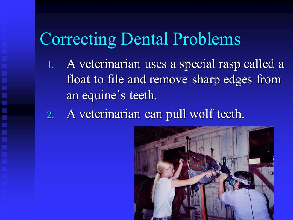 Correcting Dental Problems