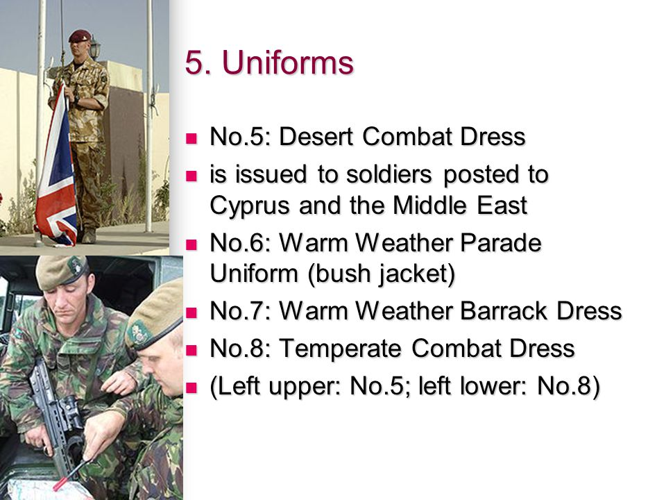 5. Uniforms No.5: Desert Combat Dress