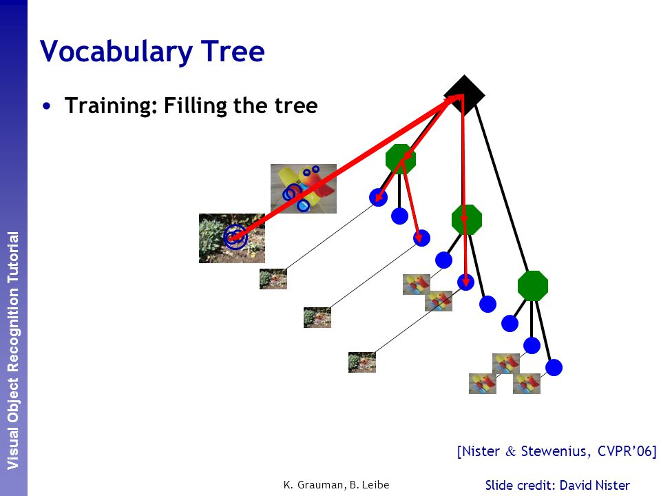 Vocabulary Tree Training: Filling the tree