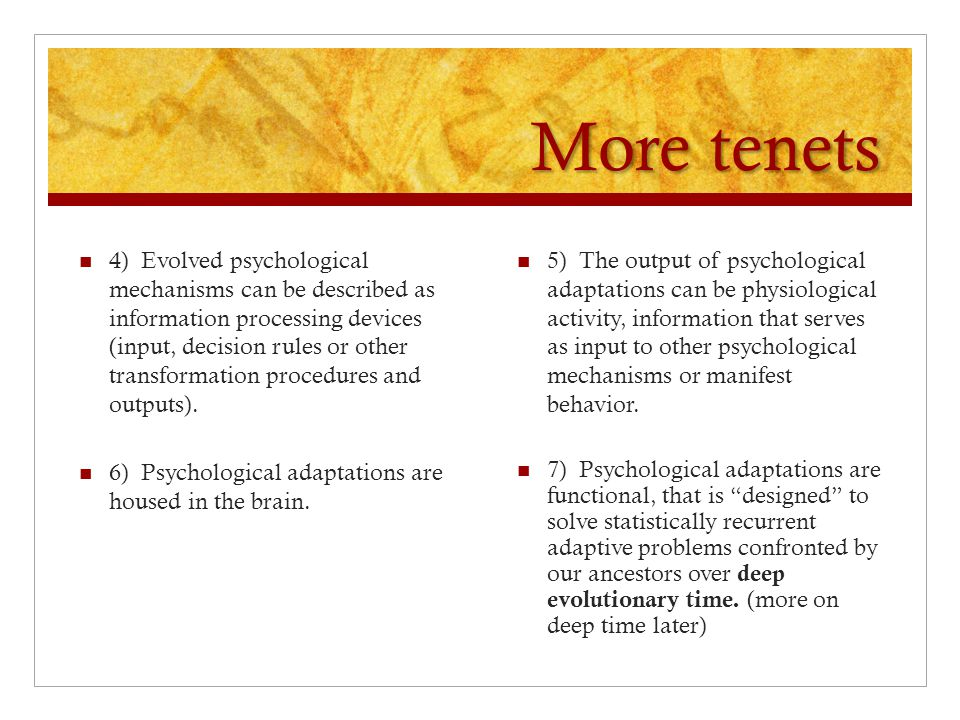 More tenets