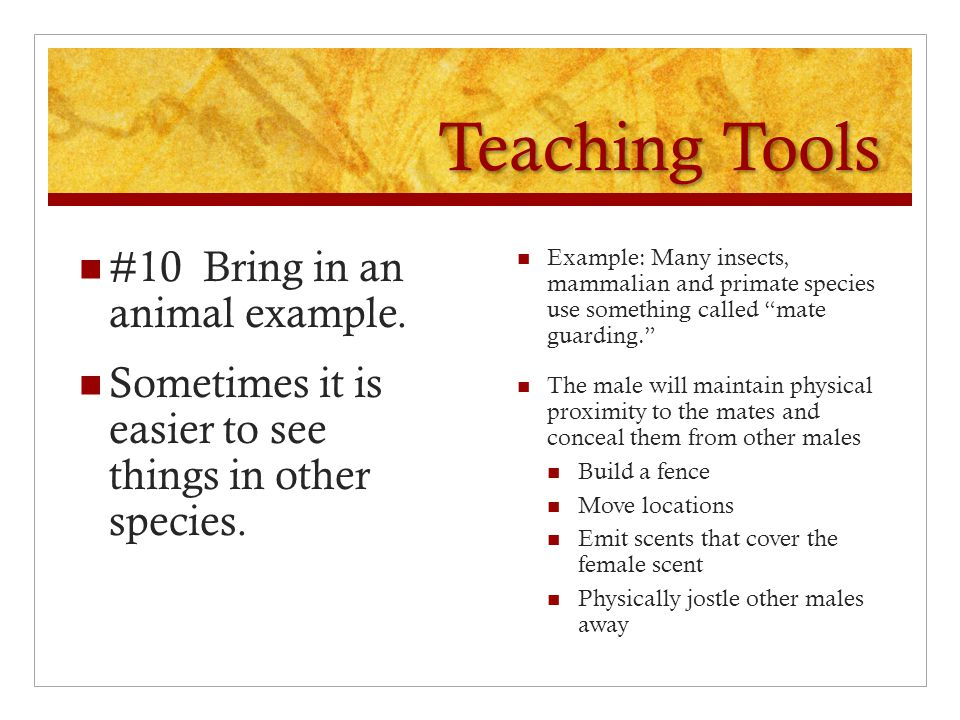 Teaching Tools #10 Bring in an animal example.