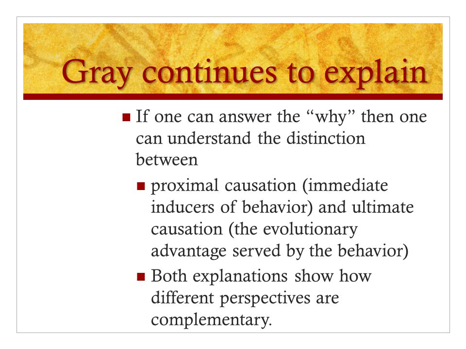 Gray continues to explain