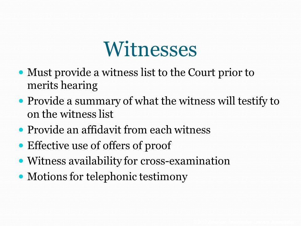 Witnesses Must provide a witness list to the Court prior to merits hearing.