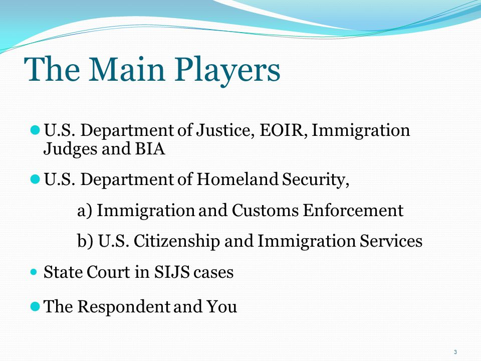 The Main Players U.S. Department of Justice, EOIR, Immigration Judges and BIA. U.S. Department of Homeland Security,