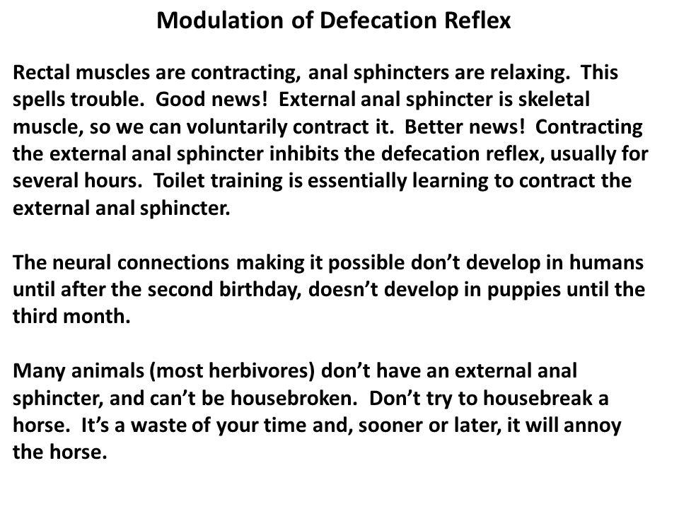Modulation of Defecation Reflex