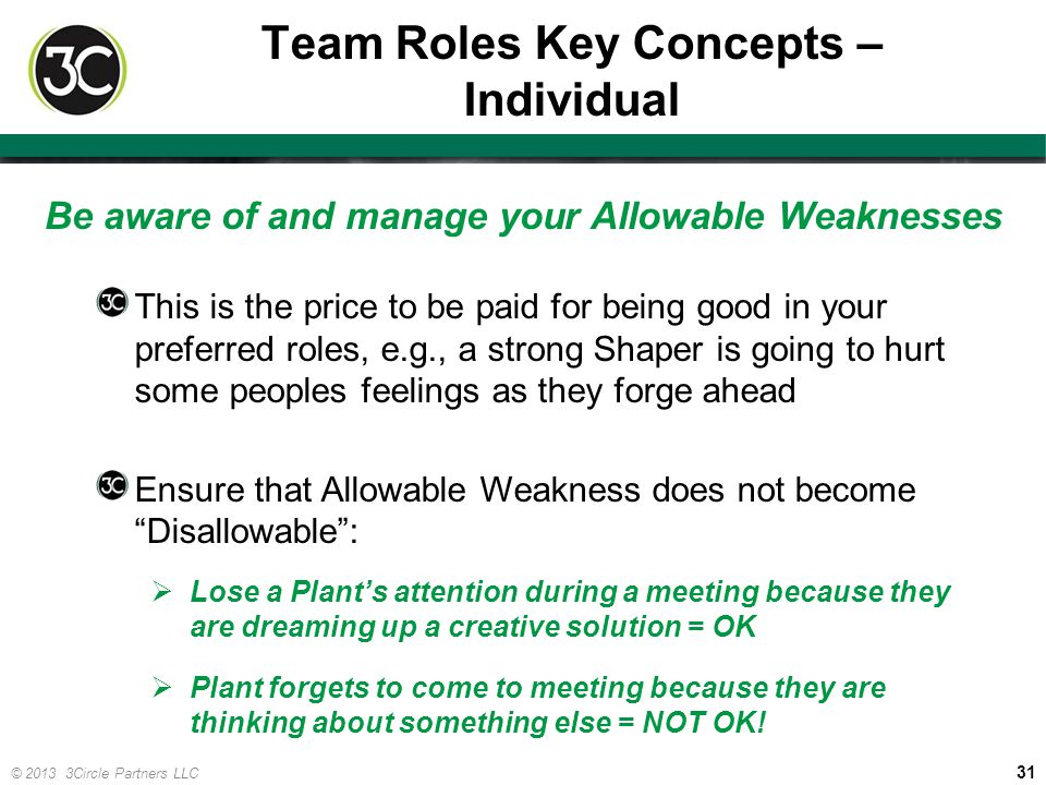 Team Roles Key Concepts – Individual