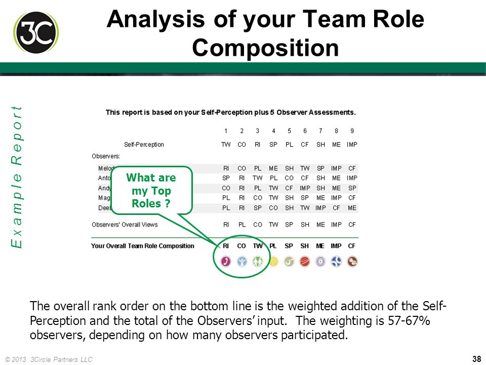 Analysis of your Team Role Composition