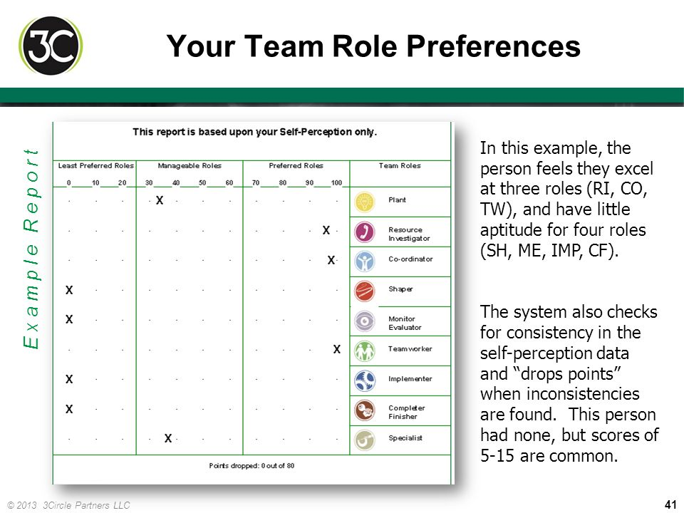 Your Team Role Preferences