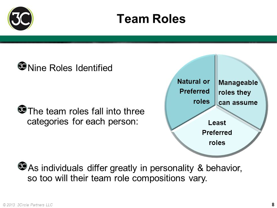 Team Roles Nine Roles Identified