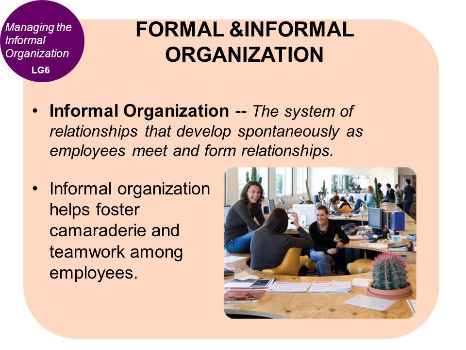 FORMAL &INFORMAL ORGANIZATION