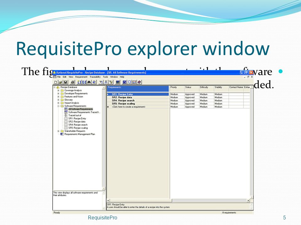 RequisitePro explorer window