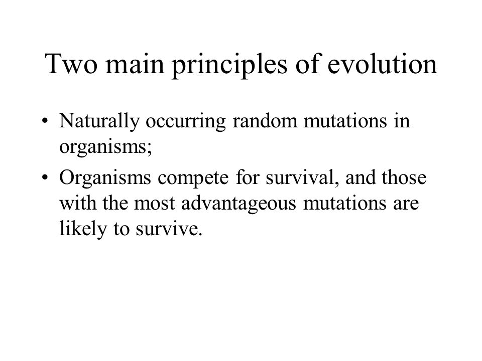 Two main principles of evolution
