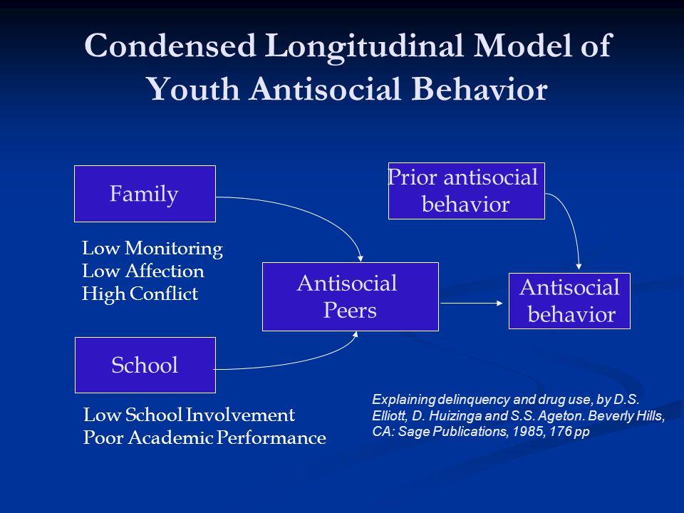 Condensed Longitudinal Model of Youth Antisocial Behavior