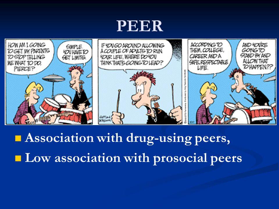 PEER Association with drug-using peers,