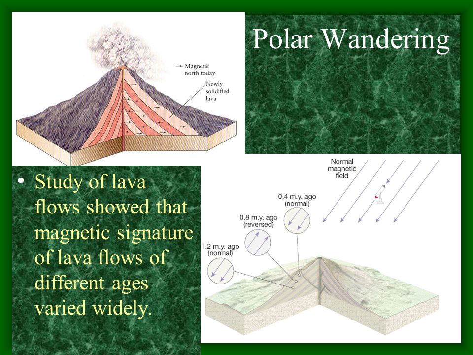 Polar Wandering Study of lava flows showed that magnetic signature of lava flows of different ages varied widely.