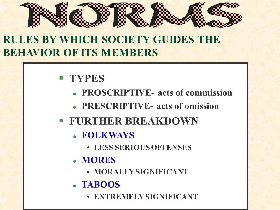 RULES BY WHICH SOCIETY GUIDES THE BEHAVIOR OF ITS MEMBERS