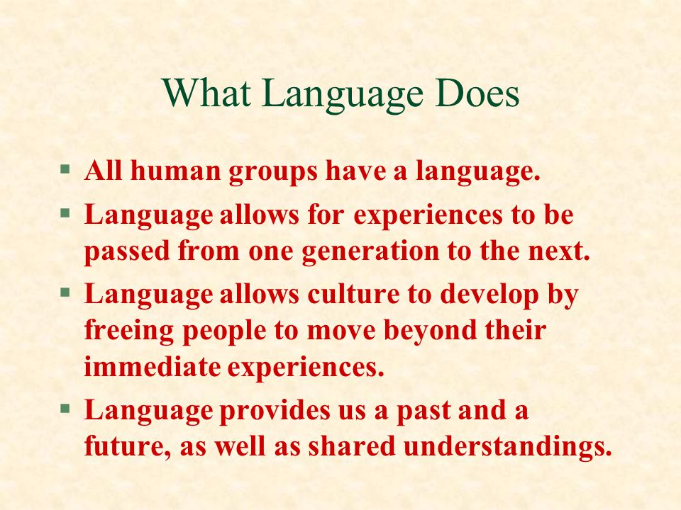 What Language Does All human groups have a language.