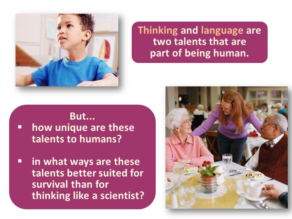 Thinking and language are two talents that are