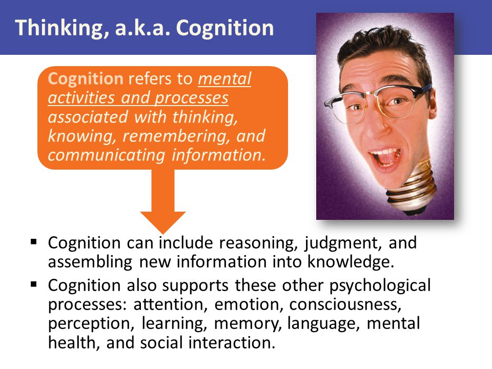 Thinking, a.k.a. Cognition
