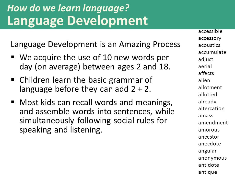 How do we learn language Language Development