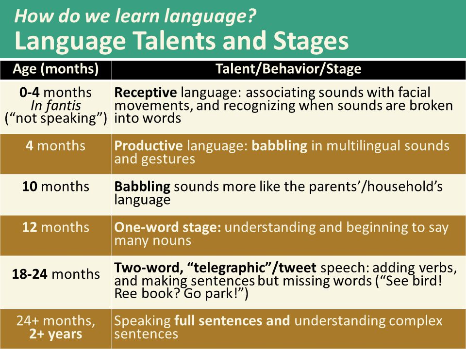 Talent/Behavior/Stage