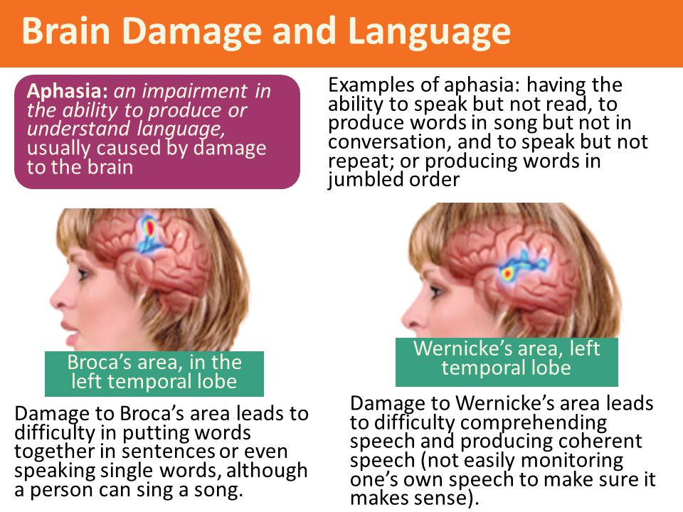 Brain Damage and Language