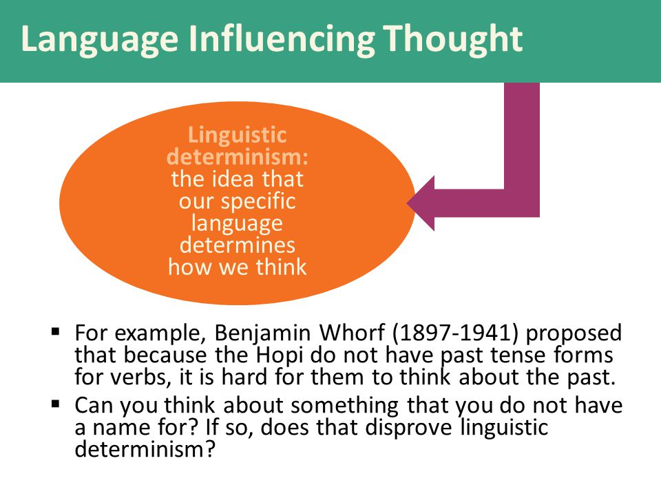 Language Influencing Thought