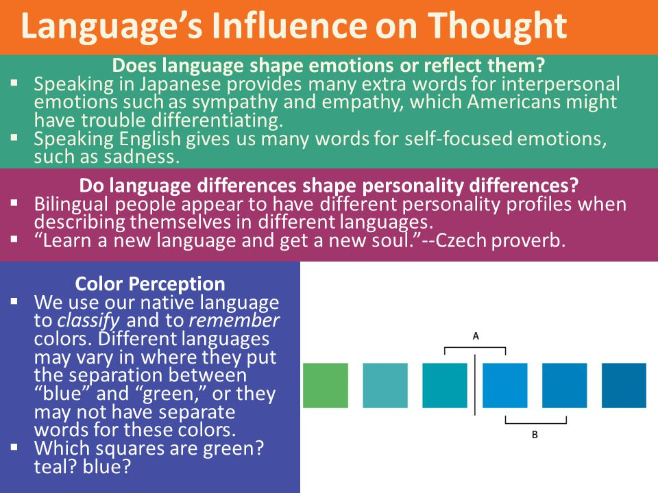 Language's Influence on Thought