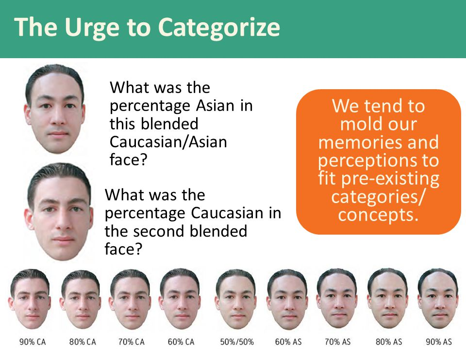 The Urge to Categorize What was the percentage Asian in this blended Caucasian/Asian face